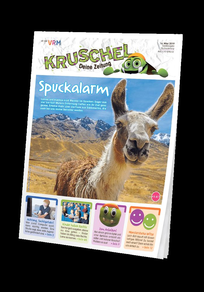 Titelseite Kruschel - Blick ins Heft